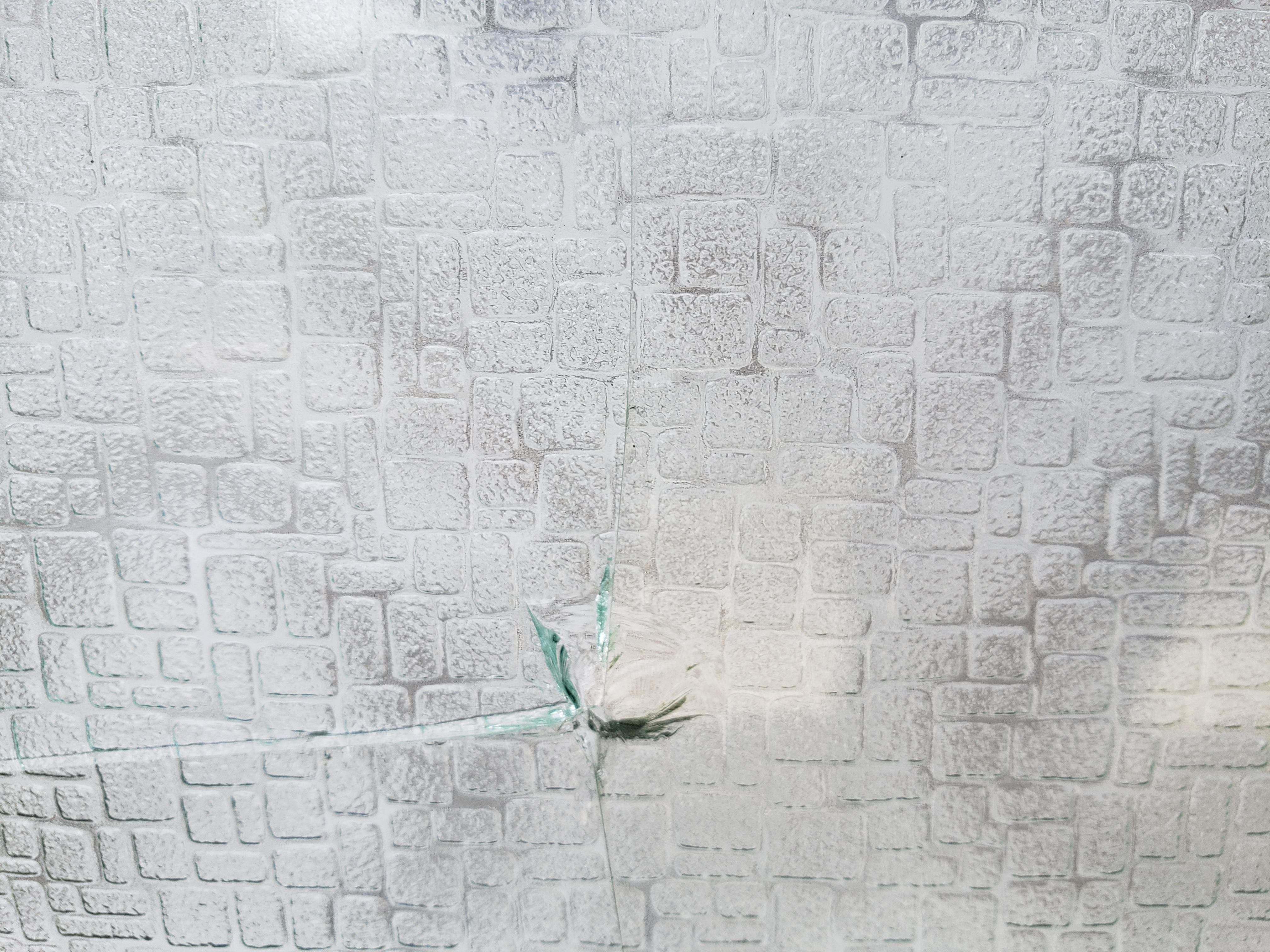 ガラス 割れ替え 現調 ギャラリーパティオのブログ メイン写真