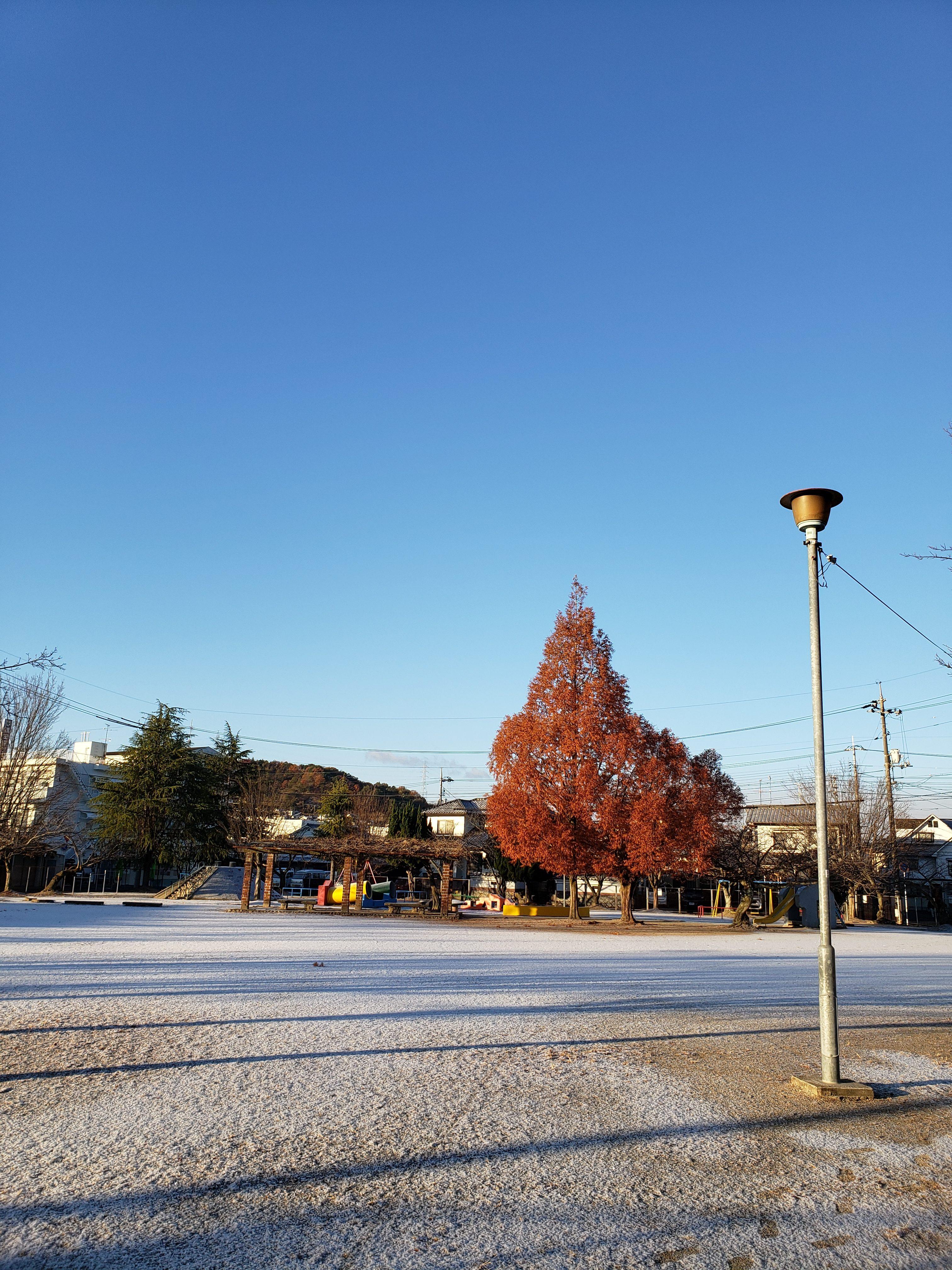 初雪 ギャラリーパティオの現場ブログ メイン写真